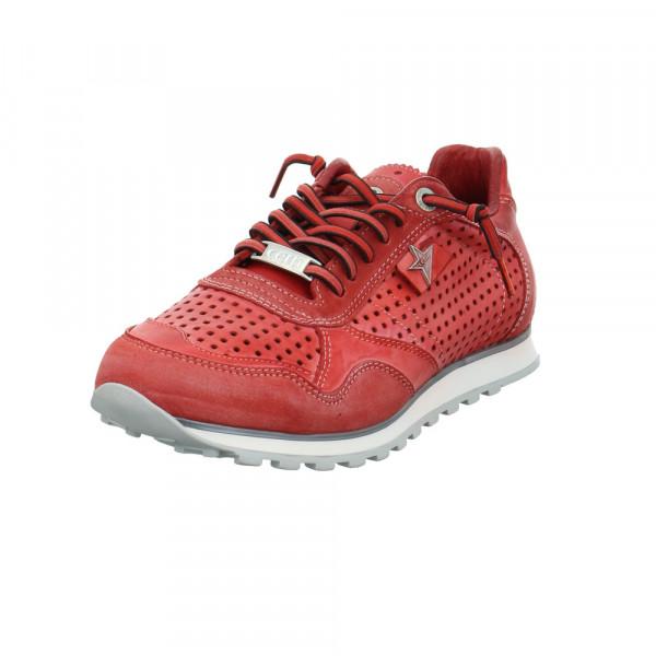 Cetti Herren C-848RED Roter Glatt-/Veloursleder Sneaker Rot / Bordeaux - Bild 1