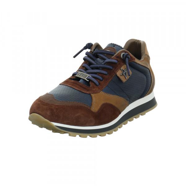 Cetti Herren C-848BROWN NAVY Multicolorfarbener Leder/Textil Sneaker Multicolor - Bild 1